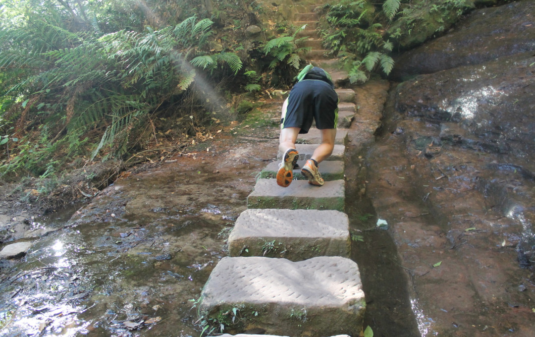 fitVenture_Bear Crawling on Stones_Wentworth Falls