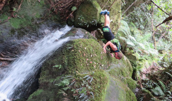 fitVenture_Push Up Waterfall_Federal Pass